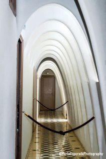 series of catenary arches, creating a space that for some people evoke the ribcage of an animal.