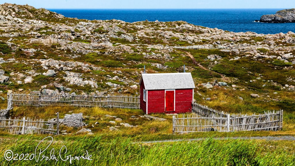 Cape shore Newfoundland, red cabin, ocean